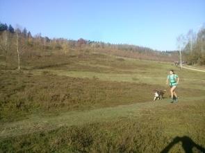 Running with Darwin